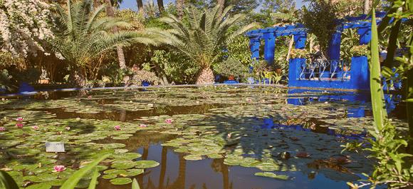 Los jardines de majorelle de lo más bello que te puedes encontrar en Marrakech