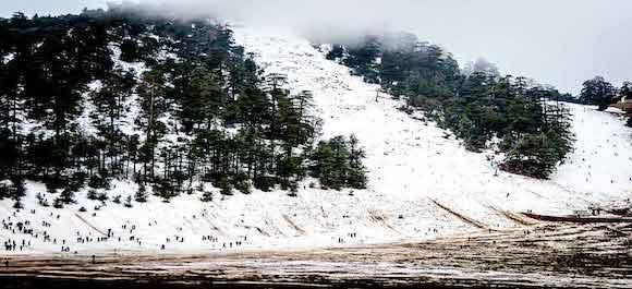 Si quieres ver mucha nieve en Marruecos, tienes que visitar Ifrane