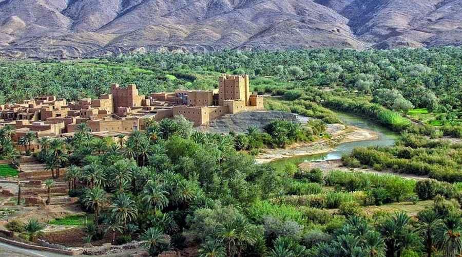 El oasis mas grande del mundo está en marruecos