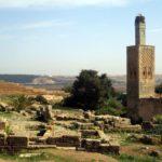 Restos romanos en Rabat, Chellah