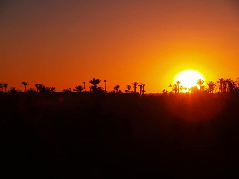 Visitar el palmeral de Marrakech: entradas, precios y horarios
